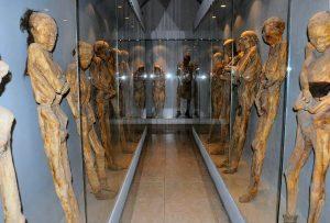Museum of Mummies