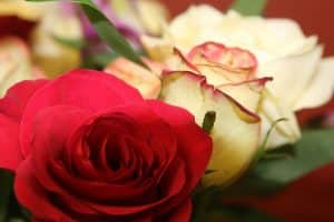 What to do with flowers after the funeral - Beyond